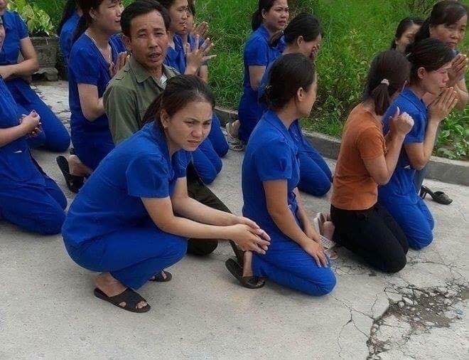 Giáo viên mầm non quỳ lạy tại Nghệ An: Lãnh đạo địa phương nói gì?
