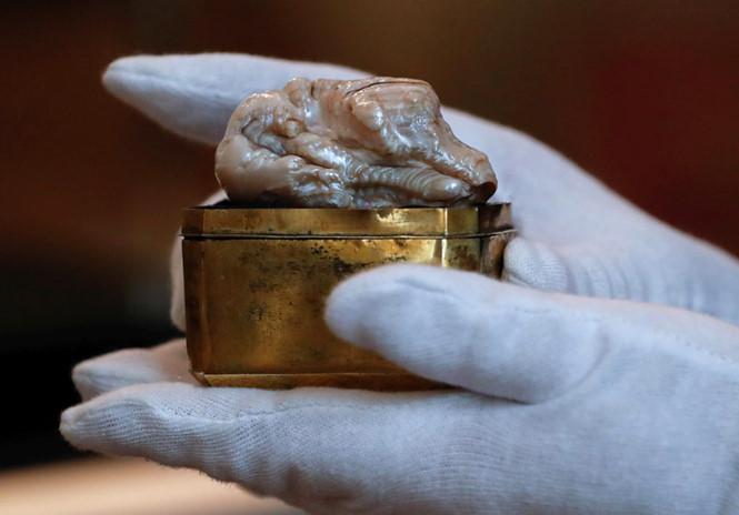 320.000 euro cho khối ngọc trai hơn 300 năm tuổi
