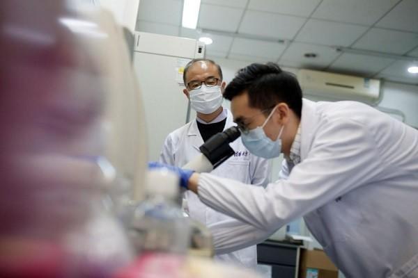 Hy vọng điều chế thuốc trị COVID-19 từ kháng thể