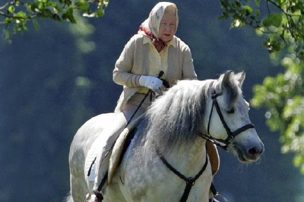 Nữ hoàng Anh 92 tuổi khoan thai cưỡi ngựa gây thú vị