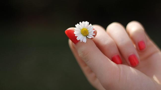 Chăm sóc đôi bàn tay với làn da mềm mại