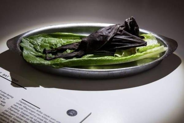 5 món quen VN có trong Bảo tàng thức ăn kinh dị nhất thế giới