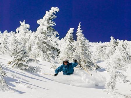 Bang Vermont (Mỹ) thưởng hơn 200 triệu cho bất kỳ ai chuyển đến đây sống