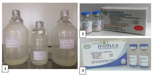 Đã sản xuất thành công vắc-xin ngừa cúm mùa ở Việt Nam