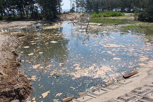 Hà Tĩnh: Xử phạt một doanh nghiệp vì gây ô nhiễm môi trường