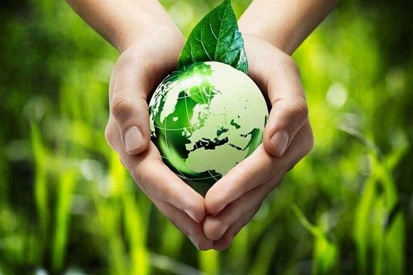 Xã hội đã thực hiện lối sống xanh tích cực ra sao ?