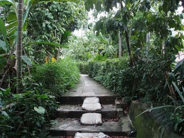 Quảng Nam có một làng Đại Bình xanh mướt