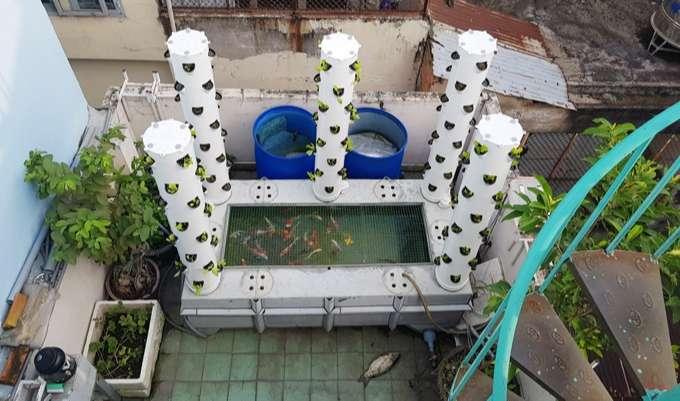 Tháp trồng rau kết hợp bể cá của một ông bố kỹ sư