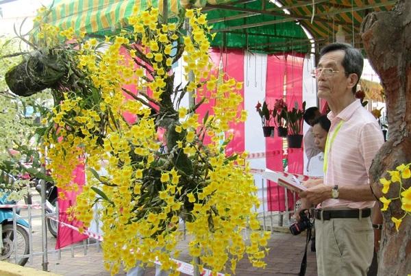 Festival Hoa lan 2019 gắn kết phát triển nông nghiệp và du lịch