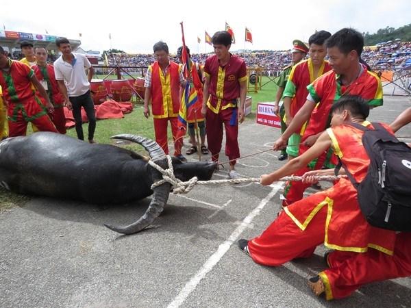 Bản sắc văn hóa và tín ngưỡng trong Lễ hội chọi trâu Đồ Sơn