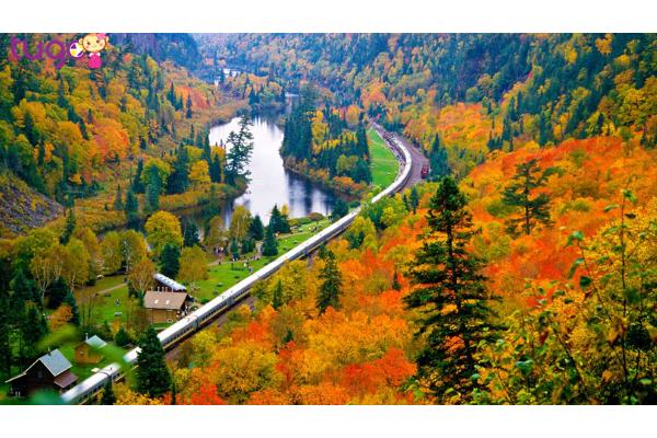 Ngắm sắc màu ấn tượng của rừng thu Canada