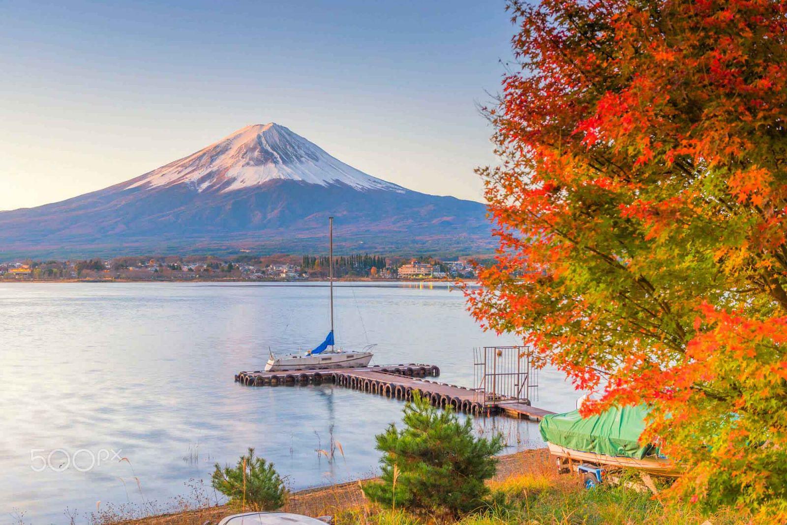Nhật Bản thu về làm say lòng du khách