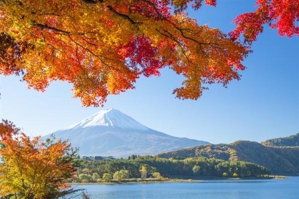 Ngắm bức tranh mùa thu tuyệt đẹp núi Phú Sĩ
