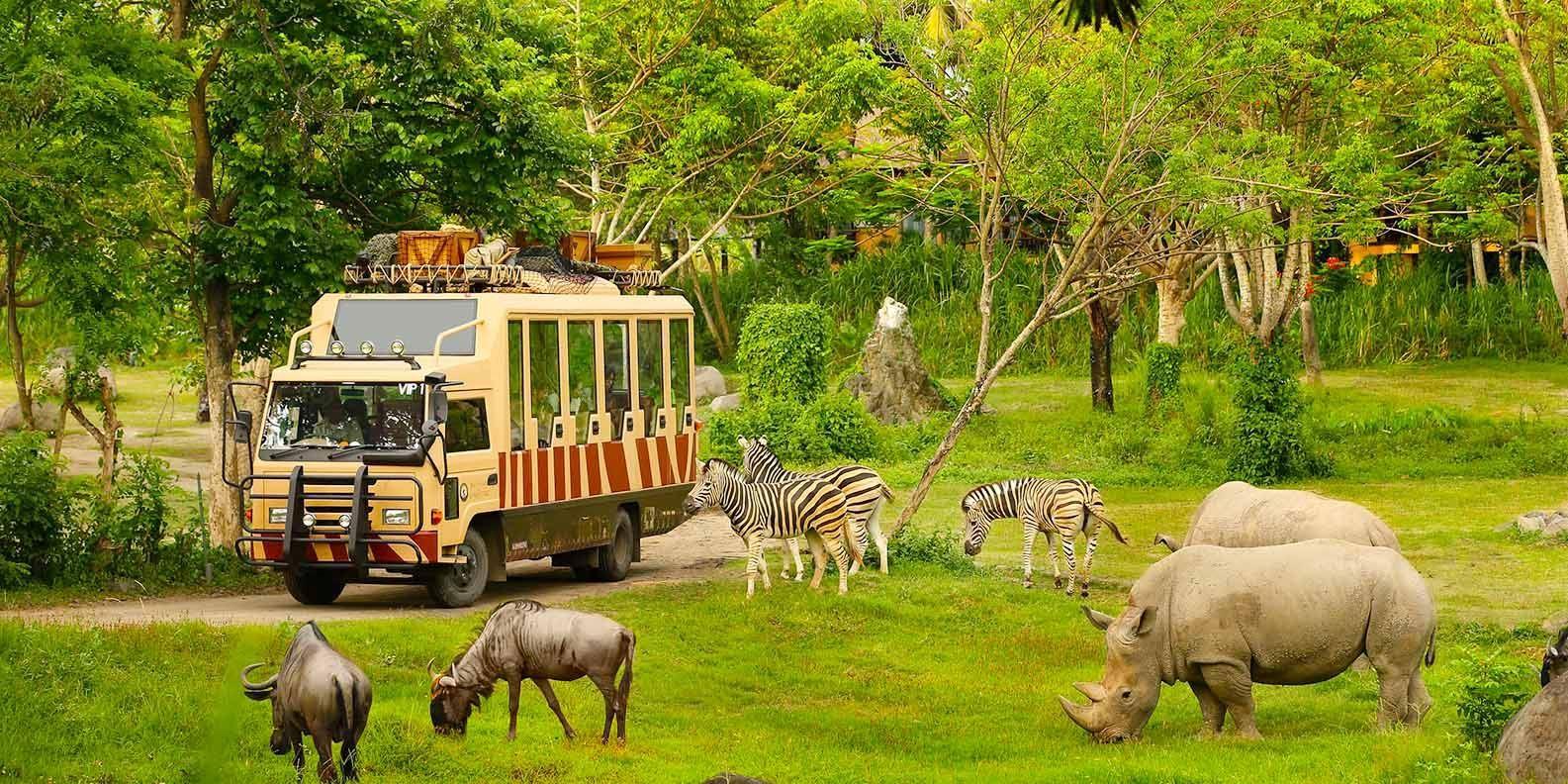 Safari Phú Quốc – điểm đến không thể thiếu cho gia đình Việt