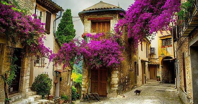 Đi tìm những ngôi làng mùa xuân trên thế giới
