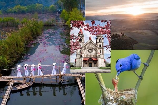 Nhiếp ảnh gia Việt Nam chiến thắng cuộc thi ảnh Agora Mùa xuân