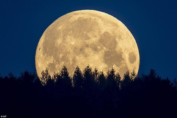 Màn trình diễn ngoạn mục của 'siêu trăng hoa'