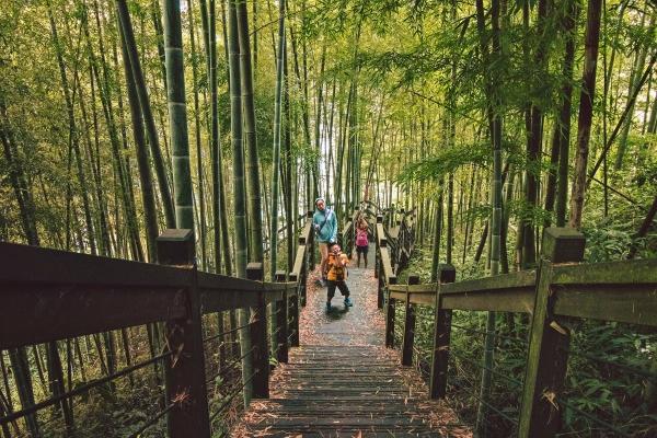 Giữ hồn Việt trong cảnh quan thiên nhiên