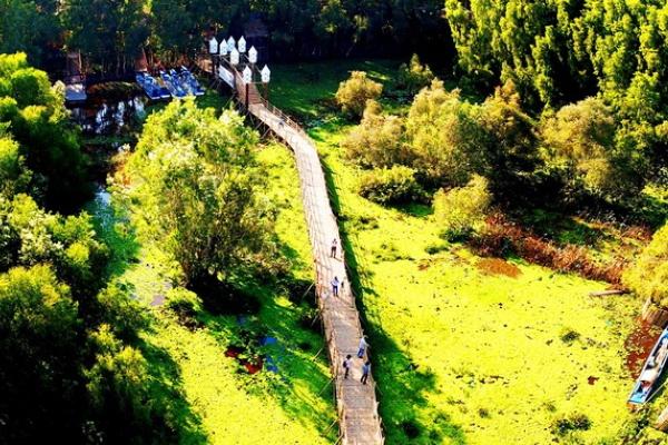 Vẻ mướt mắt của rừng tràm Trà Sư đẹp và nổi tiếng nhất Việt Nam