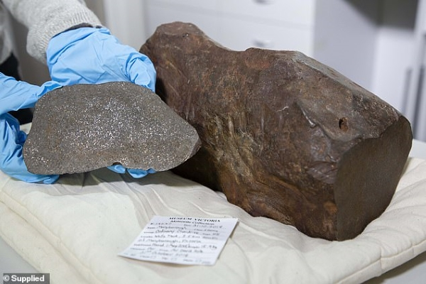 Thợ đào vàng tìm thấy thiên thạch hiếm, bằng tuổi Trái đất
