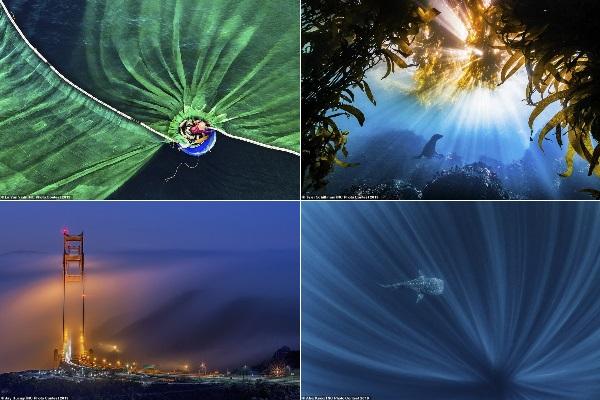 Nhiếp ảnh gia Việt Nam đạt giải nhất cuộc thi ảnh Bảo tồn thiên nhiên 2019