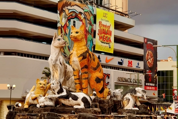 Đến thành phố Mèo xem 'dã nhân' dạo công viên