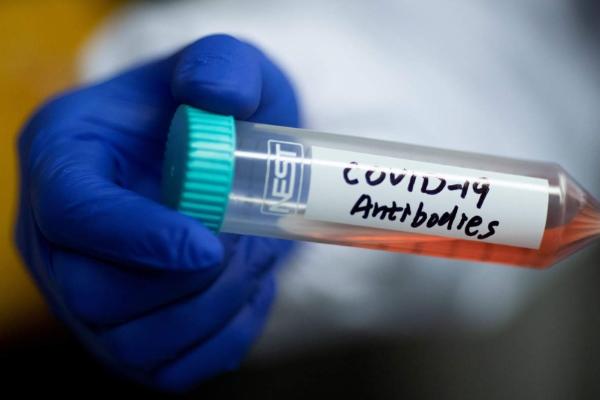 Bước tiến đột phá: Phân lập thành công kháng thể nCoV