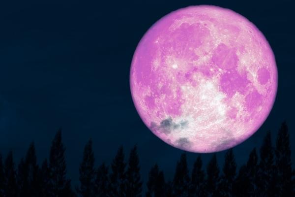 Đón xem 'siêu trăng hồng' lớn nhất năm