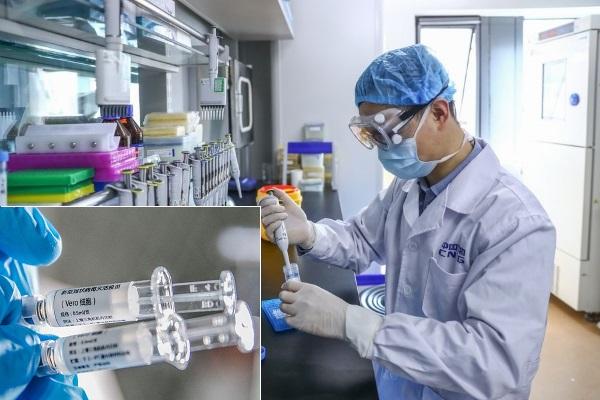 Vaccine Covid-19 bắt đầu thử nghiệm giai đoạn 2