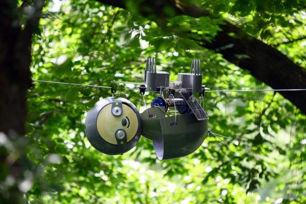 Robot 'con lười' giúp bảo tồn thiên nhiên