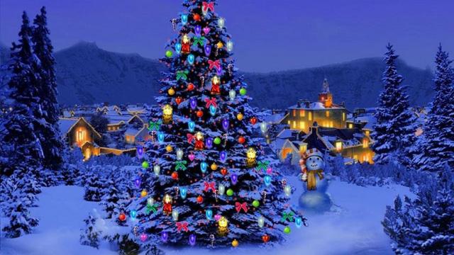 Vì sao Noel phải có cây thông?