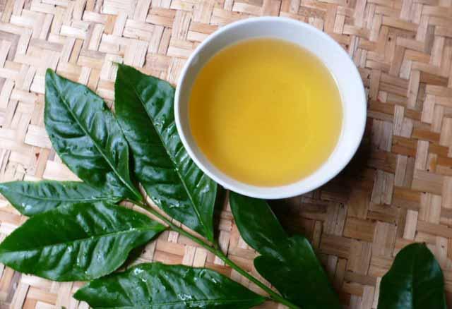 Uống trà xanh để giảm mỡ cánh tay